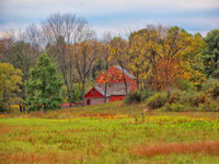 birdsboro, pennsylvania, daniel boone homestead, barn, fall, view, pastoral,