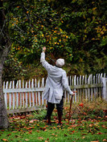 birdsboro, pennsylvania, mysterious, person, apple, harvest,