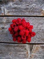 pennsylvania, quakertown, harvest, razzberries,