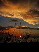bonita beach, florida, gulf of mexico, sky, metallic, sunset, oasis,