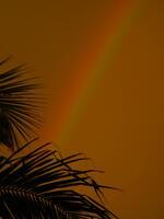 bonita beach, florida, sunsets, rainbow, golden,