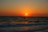 bonita beach, florida, sunset, windsurfer, surfboard,