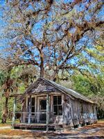 estero, florida, koreshan state park, membership cottage, estero river, community,