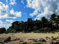 Castle In The Cove