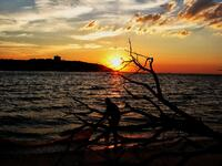 new jersey, sandy hook state park, sandy hook bay, fishermens,
