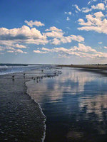 sandy hook state park , new jersey, sky, water, shapes, textures, tidal, reflections,