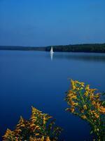 pennsylvania, haycock, goldenrod, summer, lake,
