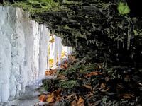 pennsylvania, haycock, winter, spring, crevice,
