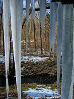 pennsylvania, haycock, ice, spring, waters,