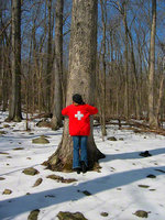 pennsylvania, haycock, nature, person, tree hugger, first aid,
