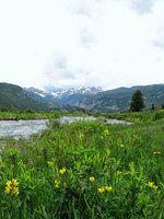colorado, rocky mountain national park, hidden valley, glaciers, water, wildflowers,