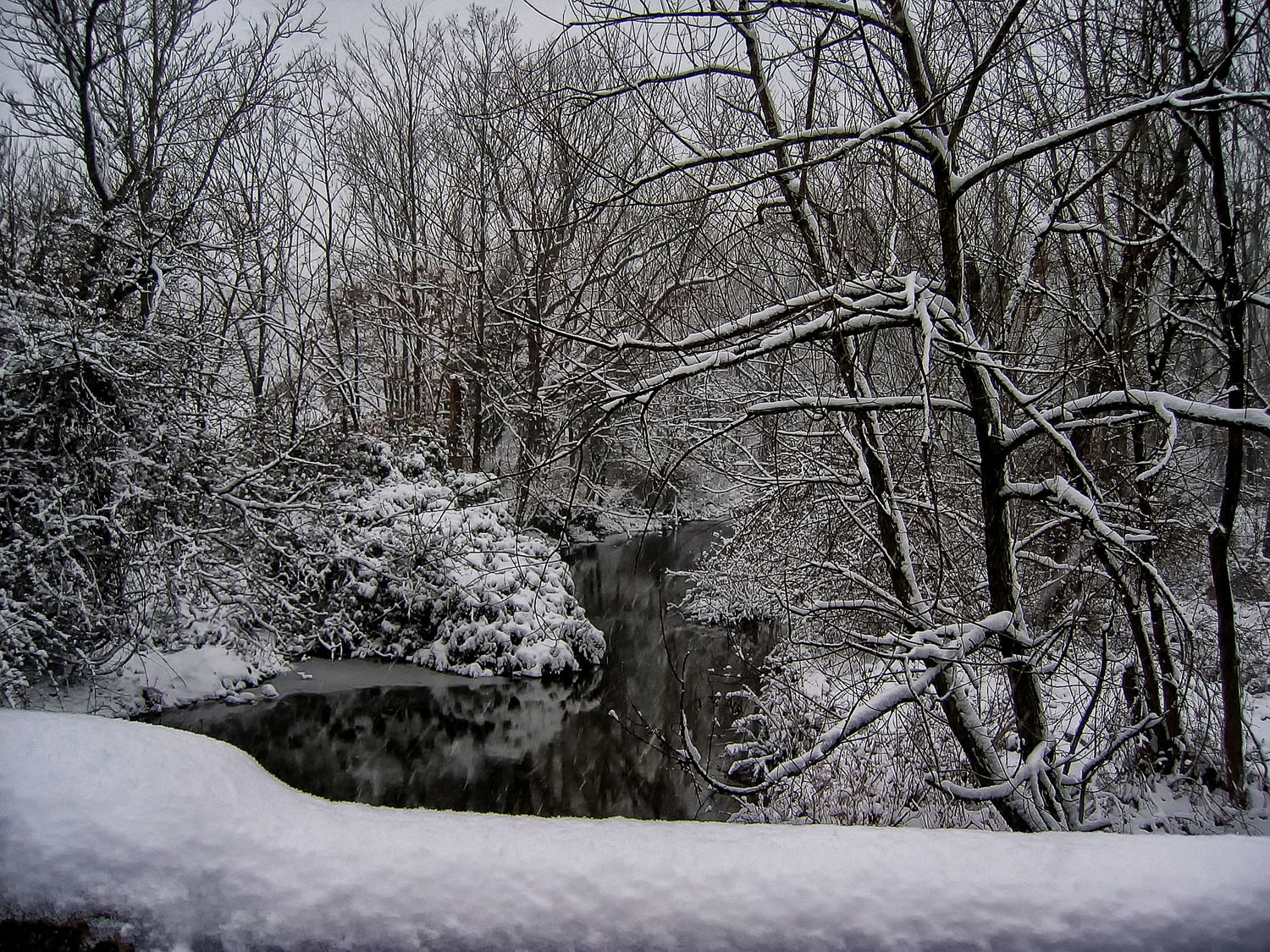 Snow covered the bridge over Haycock Run giving this image a black and white effect.