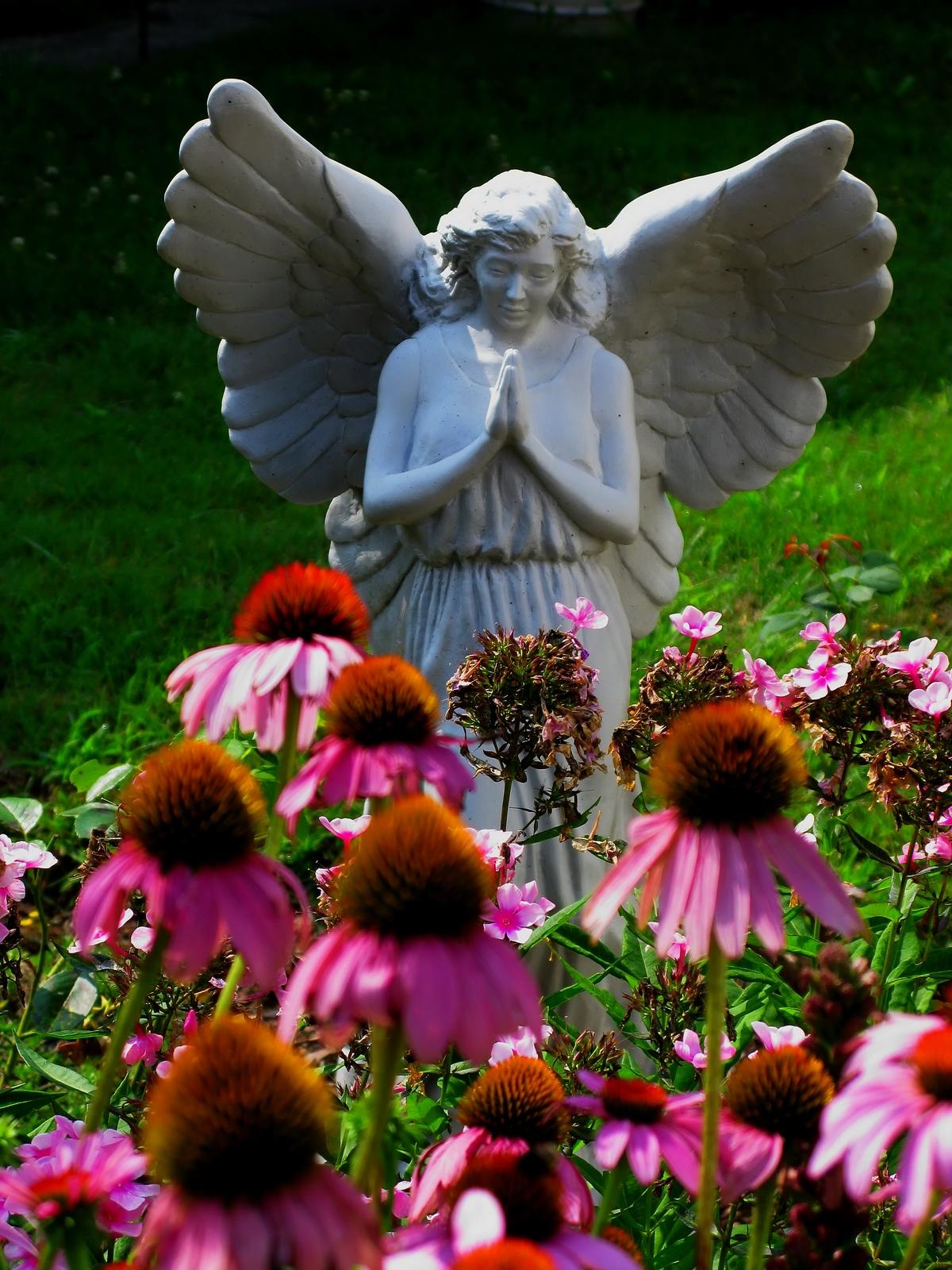 hellertown, pennsylvania, prayer, flowers, pink, angel, nature, , photo