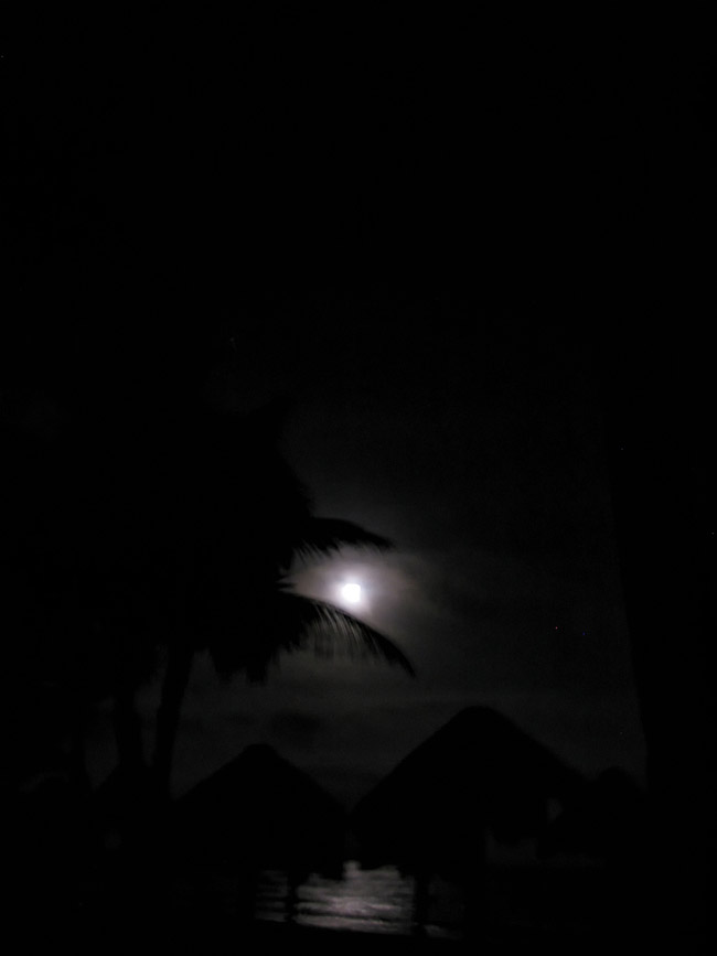 mexico, tulum, tropical, moonlit, night, full moon, yucatan peninsula, quintana- roo, , photo