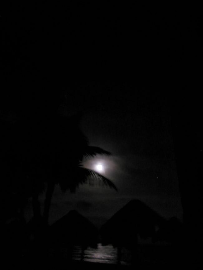 A Yucatan Peninsula tropical full moon.