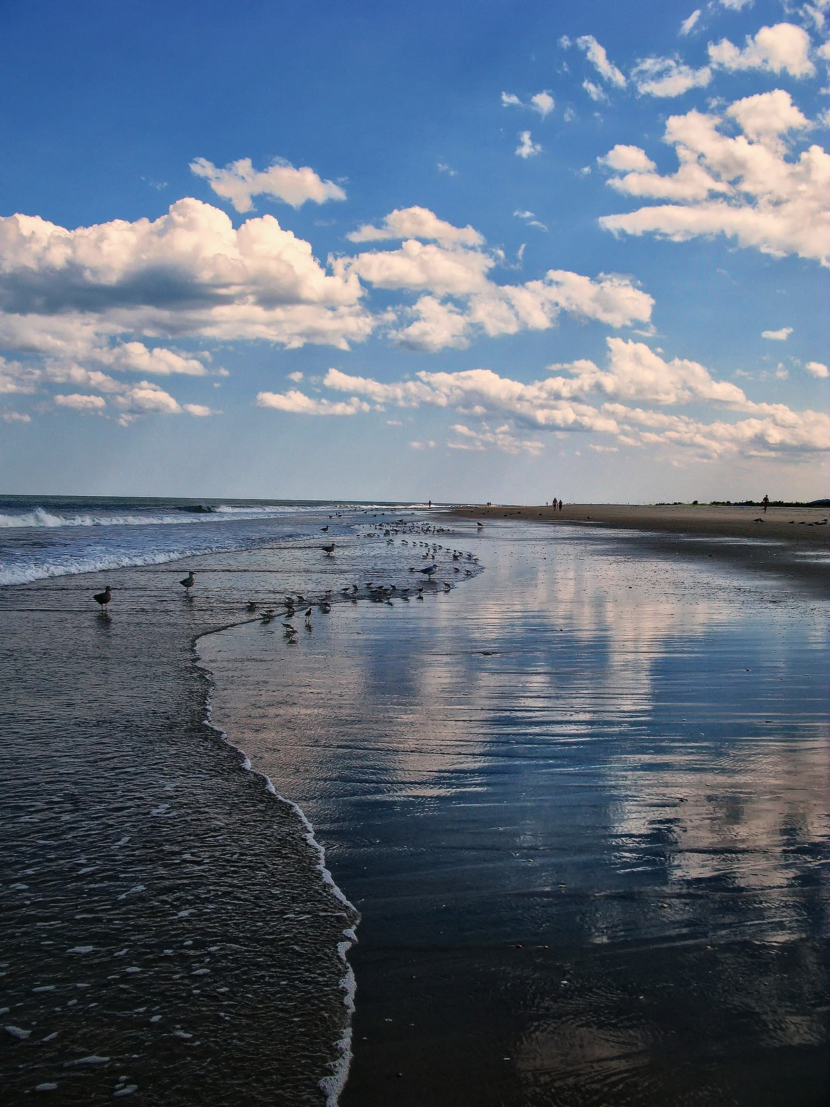 sandy hook state park , new jersey, sky, water, shapes, textures, tidal, reflections,, photo