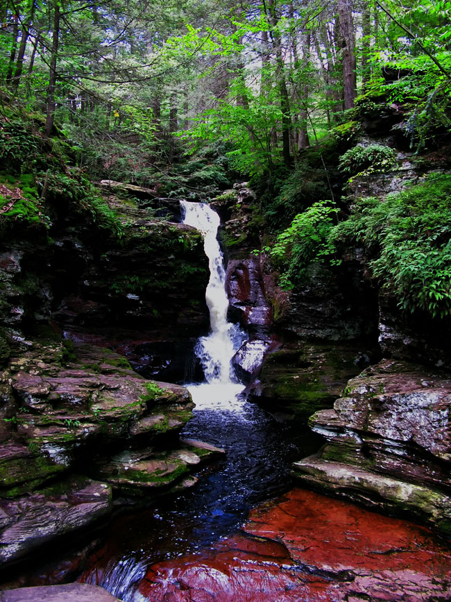 pennsylvania, ricketts glen state park, adams falls, accessible, , photo