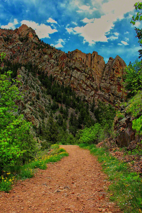 Rattlesnake Gulch Trail lived up to its name with twists and turns.
