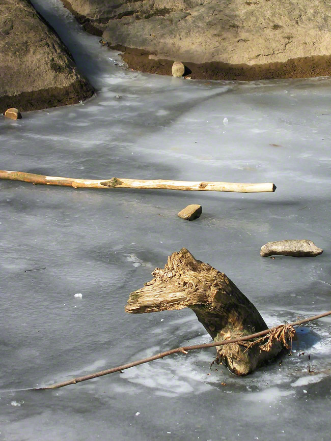 pennsylvania, milford twp, sticks, stones, winter, frozen, ice, , photo