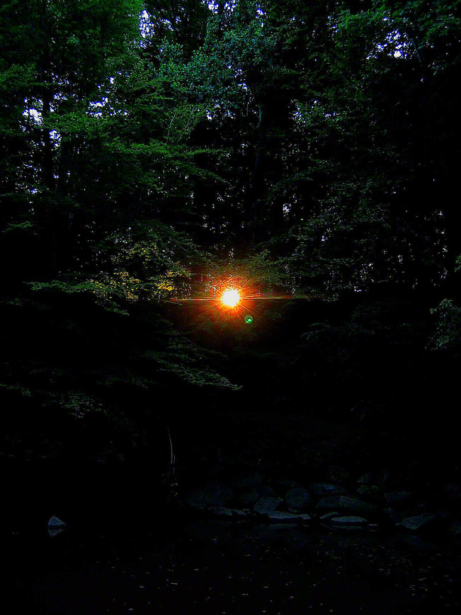 pennsylvania, milford twp, unami, sun, , photo