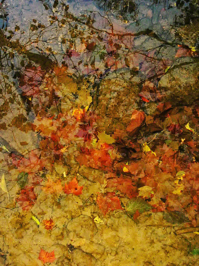pennsylvania, milford twp, fall, layers, waters, light, multi dimensional, magical, , photo