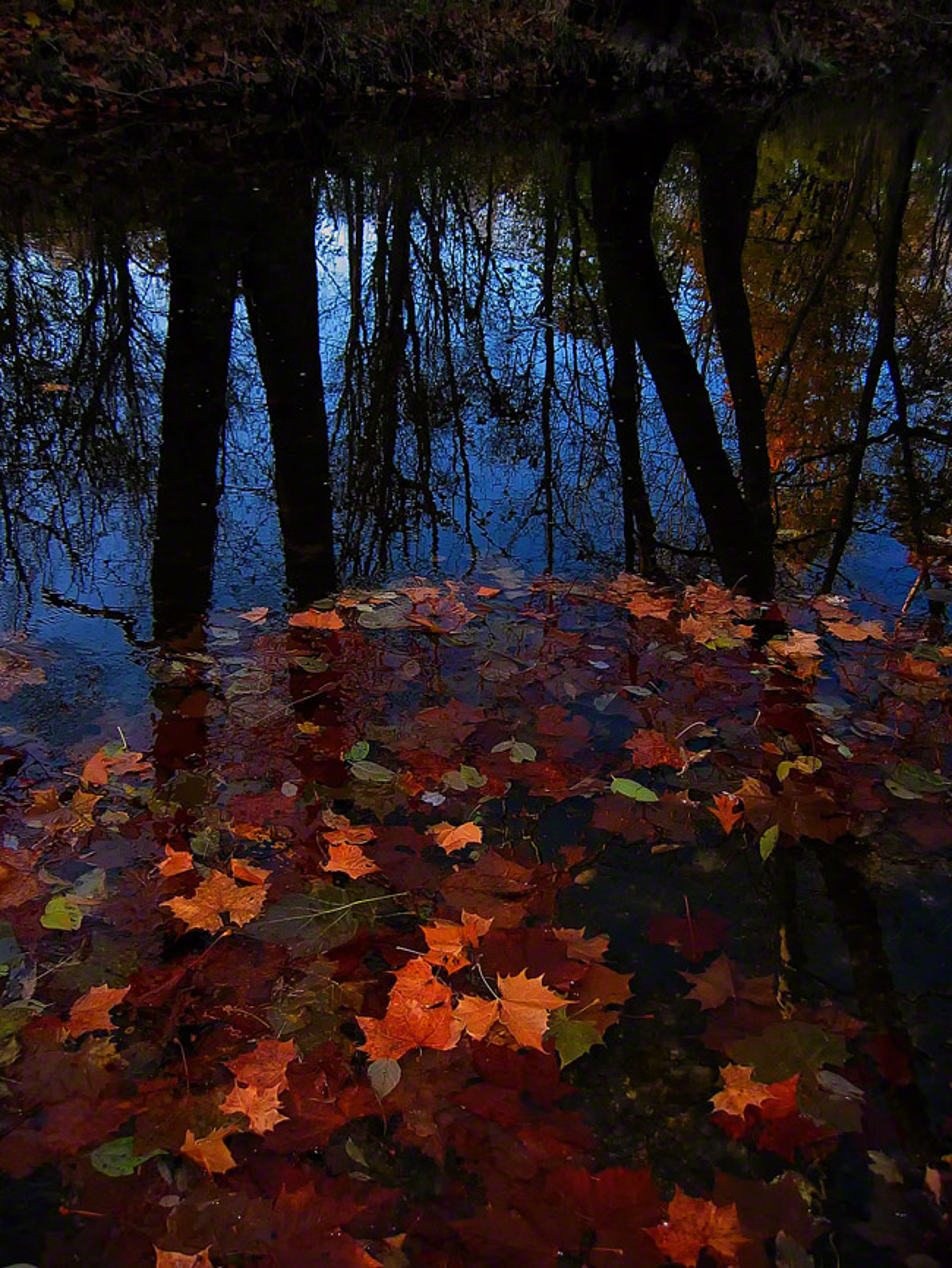 pennsylvania, milford twp, reflections, beauty, , photo